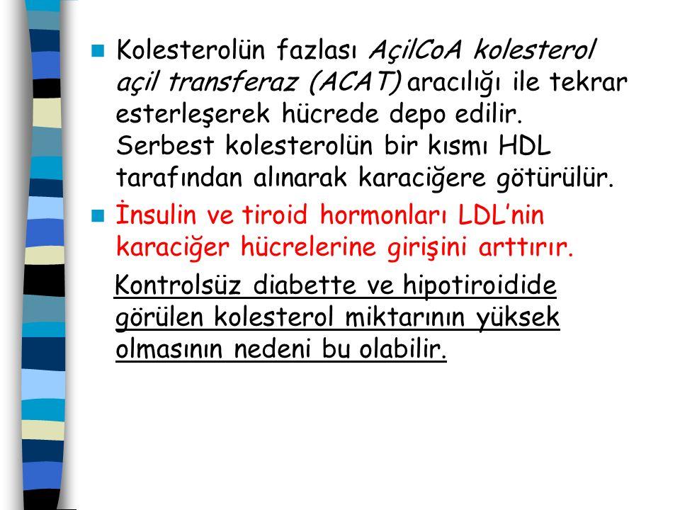 Kolesterolün fazlası AçilCoA kolesterol açil transferaz (ACAT) aracılığı ile tekrar esterleşerek hücrede depo edilir. Serbest kolesterolün bir kısmı HDL tarafından alınarak karaciğere götürülür.