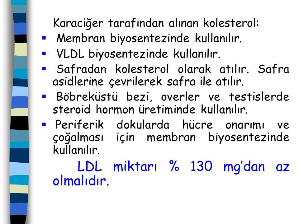 Karaciğer tarafından alınan kolesterol: