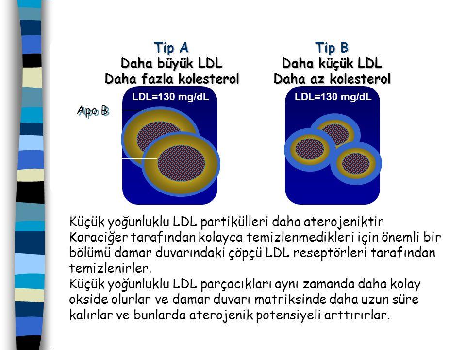 Küçük yoğunluklu LDL partikülleri daha aterojeniktir