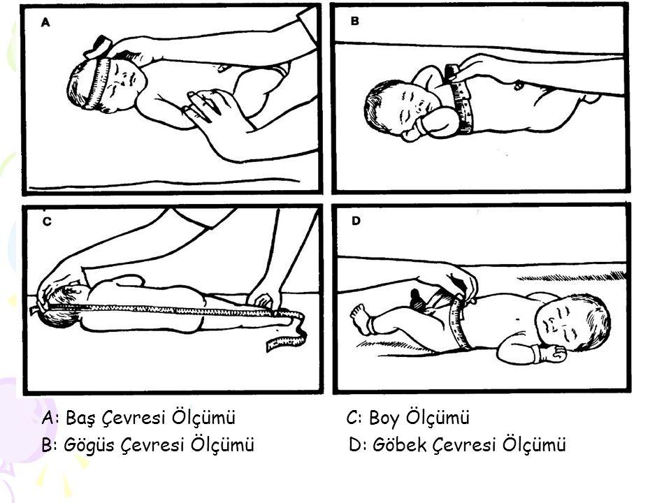 A: Baş Çevresi Ölçümü C: Boy Ölçümü B: Gögüs Çevresi Ölçümü D: Göbek Çevresi Ölçümü