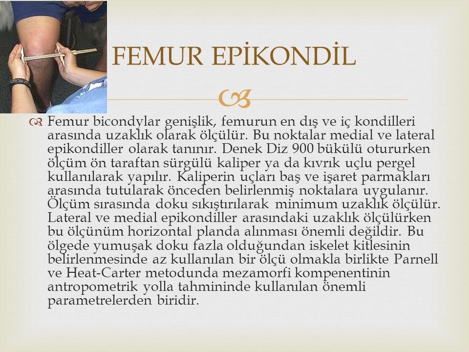 FEMUR EPİKONDİL