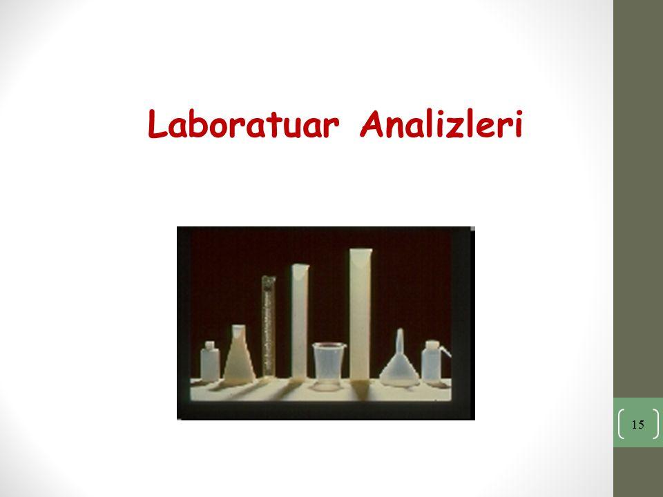 Laboratuar Analizleri