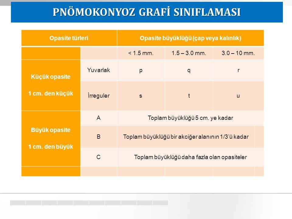 PNÖMOKONYOZ GRAFİ SINIFLAMASI Opasite büyüklüğü (çap veya kalınlık)