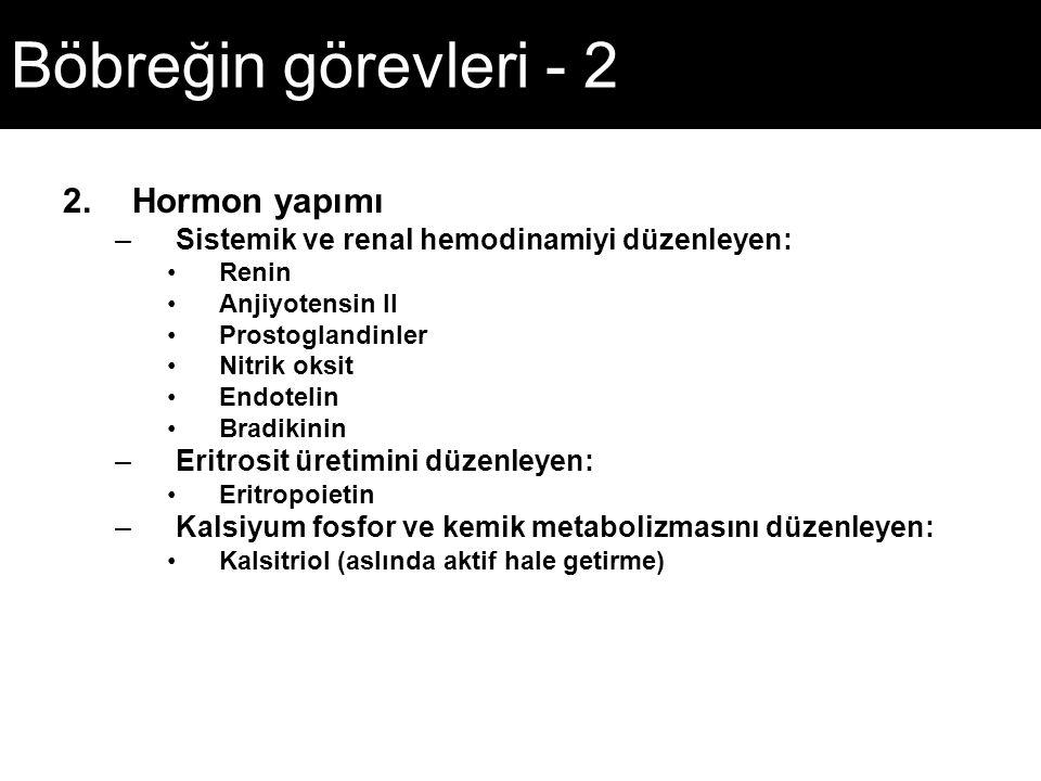 Böbreğin görevleri - 2 Hormon yapımı