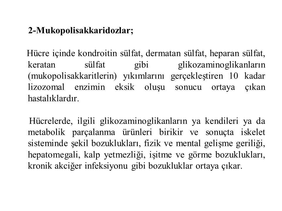 2-Mukopolisakkaridozlar;