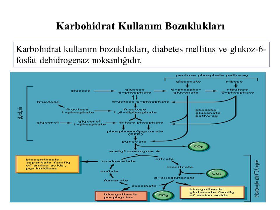 Karbohidrat Kullanım Bozuklukları