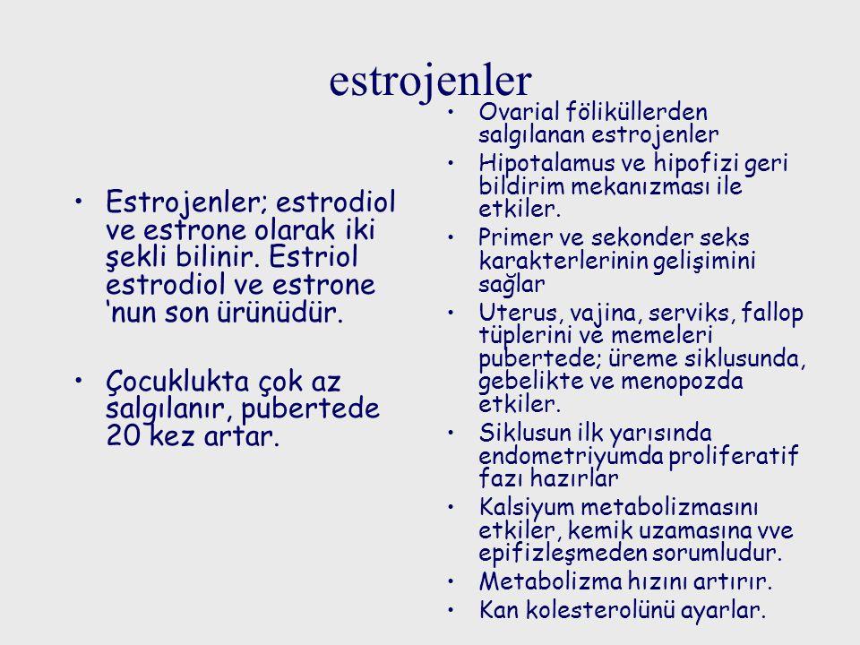estrojenler Ovarial föliküllerden salgılanan estrojenler. Hipotalamus ve hipofizi geri bildirim mekanızması ile etkiler.