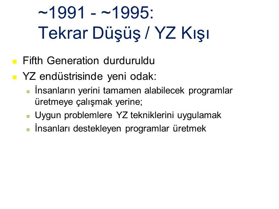~1991 - ~1995: Tekrar Düşüş / YZ Kışı