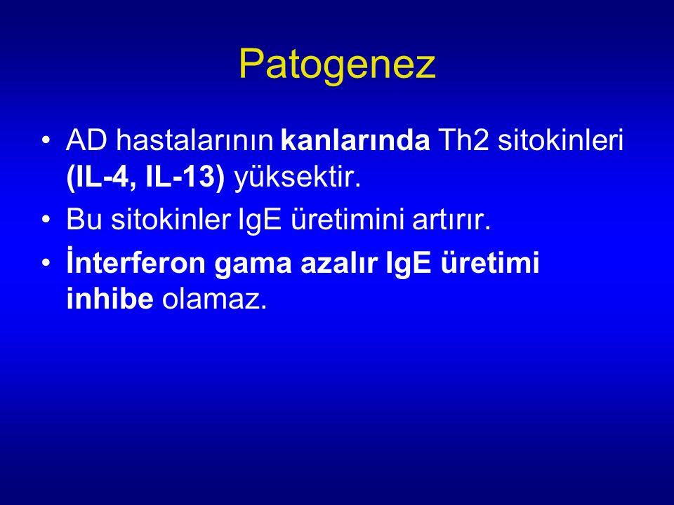 Patogenez AD hastalarının kanlarında Th2 sitokinleri (IL-4, IL-13) yüksektir. Bu sitokinler IgE üretimini artırır.