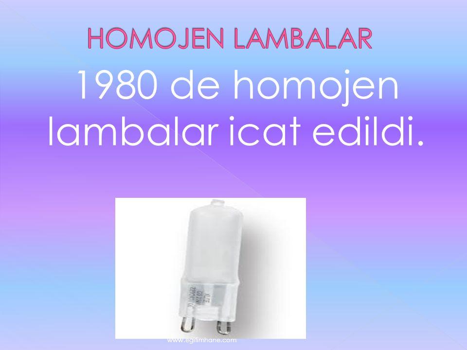 1980 de homojen lambalar icat edildi.