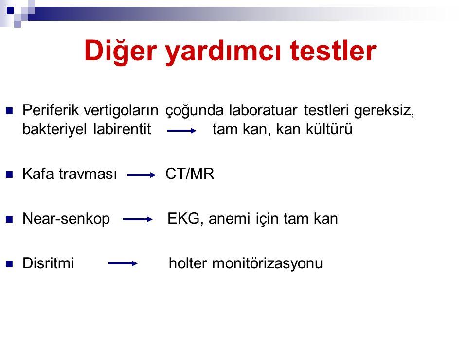 Diğer yardımcı testler