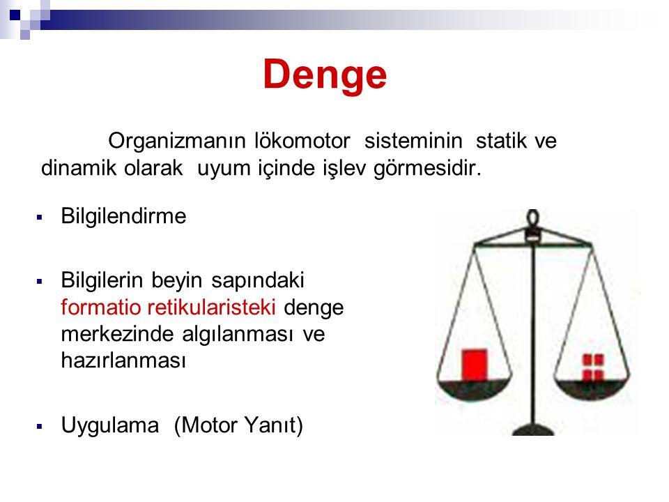 Denge Organizmanın lökomotor sisteminin statik ve dinamik olarak uyum içinde işlev görmesidir.