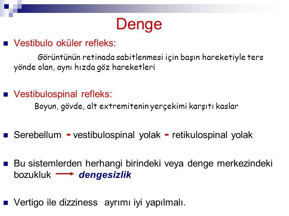 Denge Vestibulo oküler refleks: