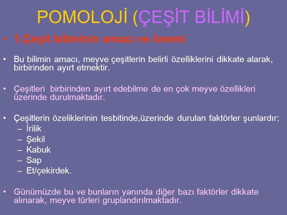 POMOLOJİ (ÇEŞİT BİLİMİ)