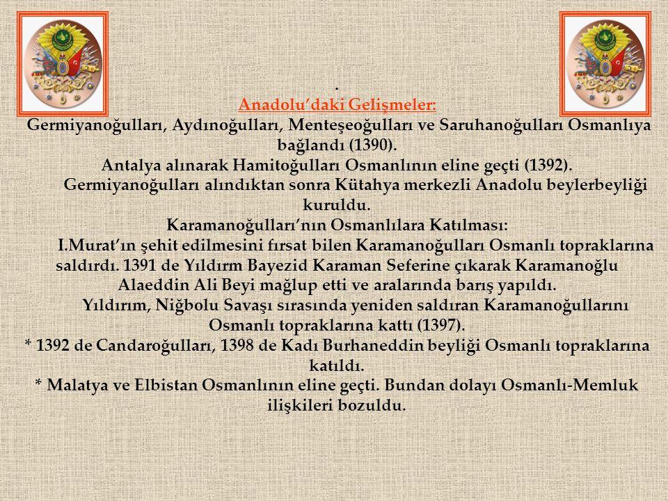 Anadolu'daki Gelişmeler: