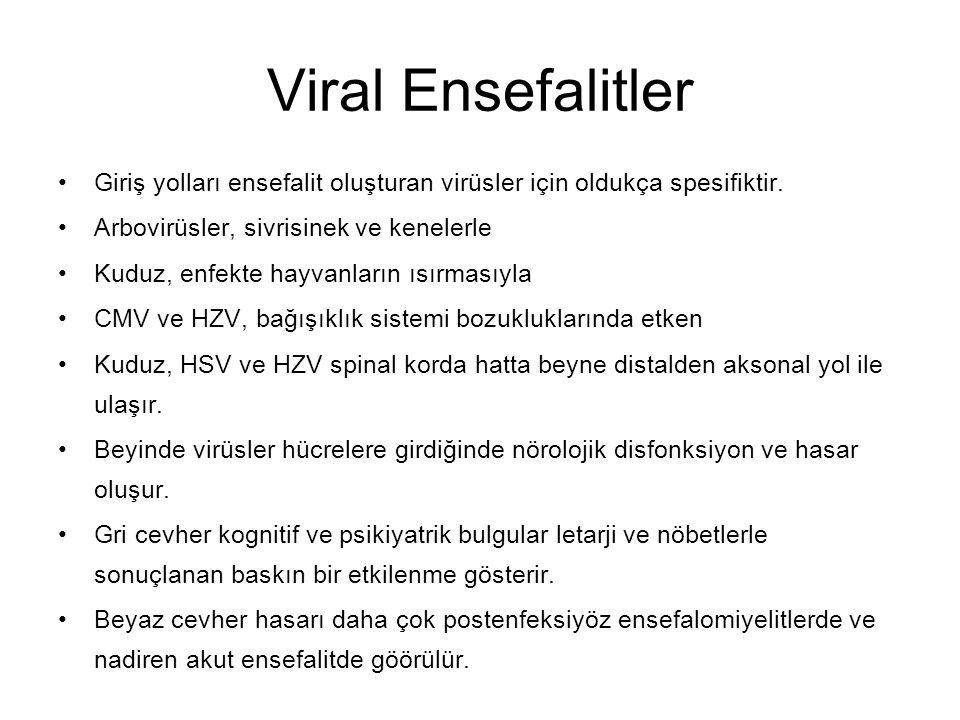 Viral Ensefalitler Giriş yolları ensefalit oluşturan virüsler için oldukça spesifiktir. Arbovirüsler, sivrisinek ve kenelerle.