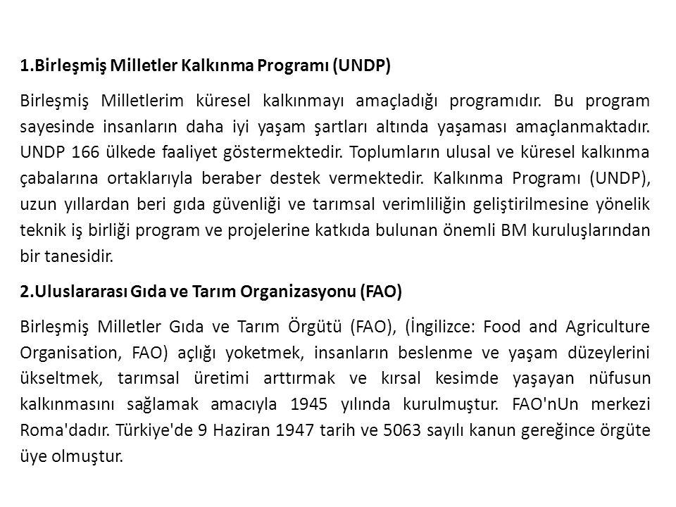 1.Birleşmiş Milletler Kalkınma Programı (UNDP)