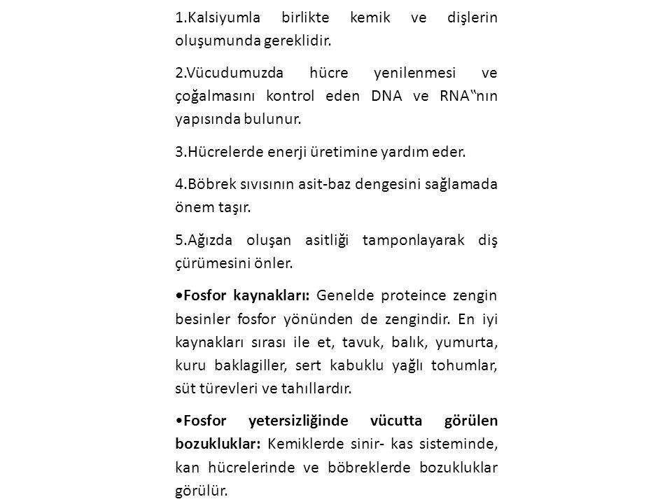 Fosfor: