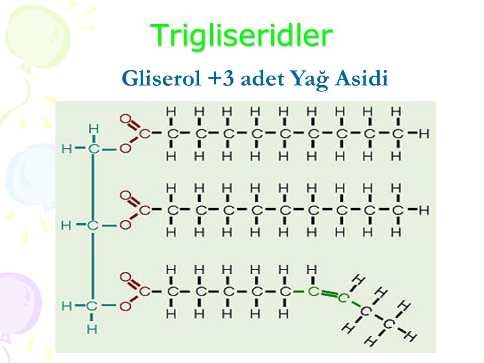 Trigliseridler Gliserol +3 adet Yağ Asidi