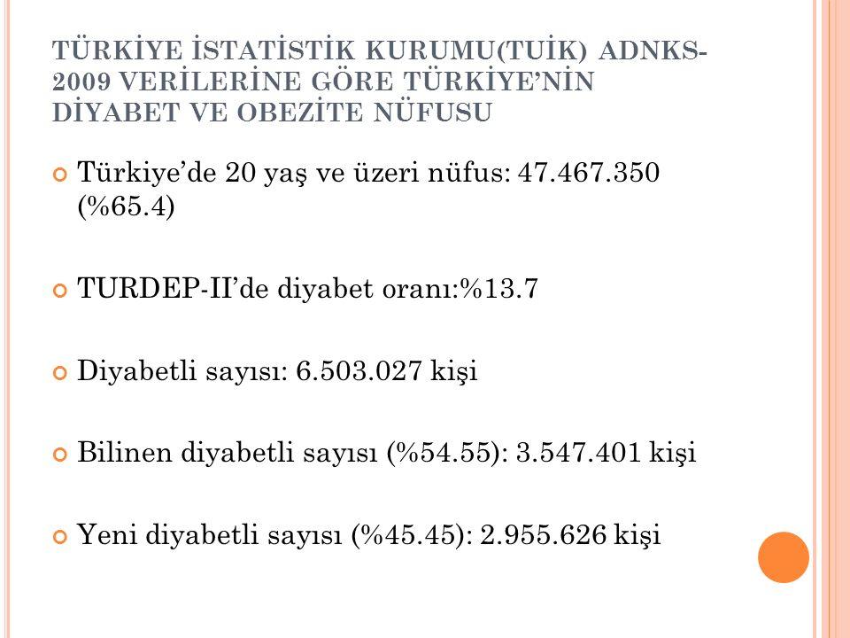 Türkiye'de 20 yaş ve üzeri nüfus: 47.467.350 (%65.4)