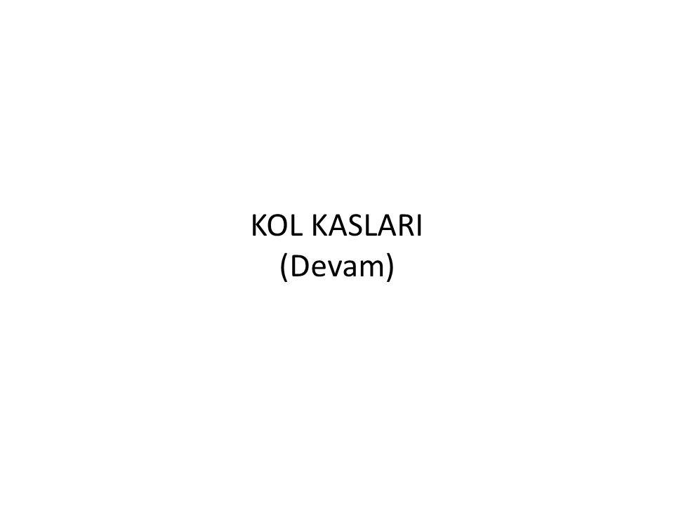 KOL KASLARI (Devam)