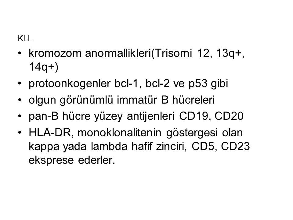 kromozom anormallikleri(Trisomi 12, 13q+, 14q+)