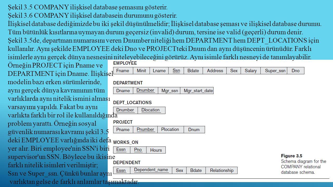 Şekil 3.5 COMPANY ilişkisel database şemasını gösterir.