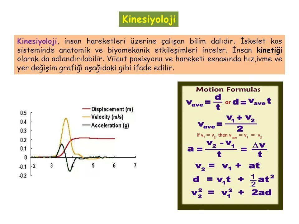 Kinesiyoloji