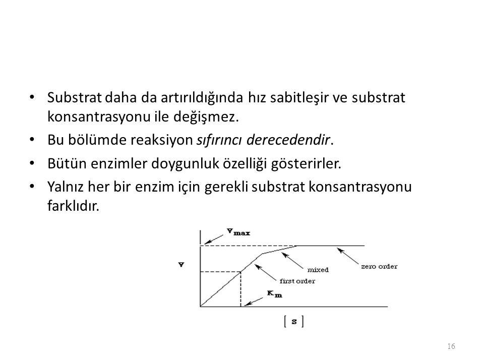 Substrat daha da artırıldığında hız sabitleşir ve substrat konsantrasyonu ile değişmez.