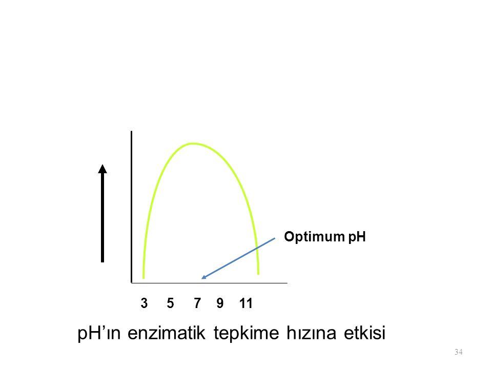 Optimum pH 3 5 7 9 11 pH'ın enzimatik tepkime hızına etkisi