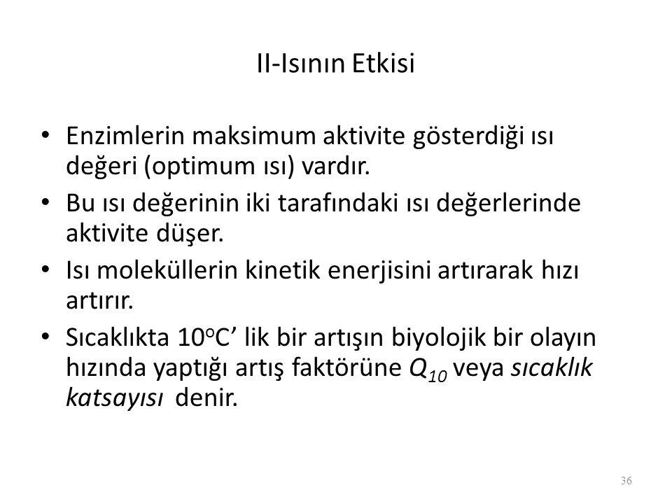 II-Isının Etkisi Enzimlerin maksimum aktivite gösterdiği ısı değeri (optimum ısı) vardır.