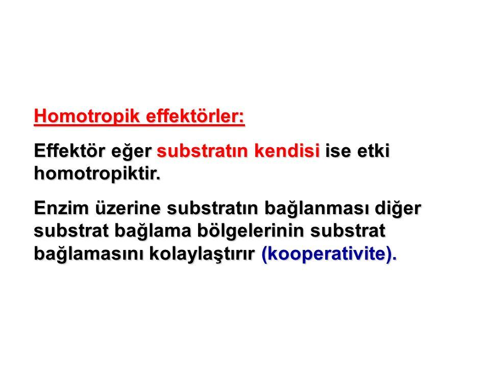 Homotropik effektörler: