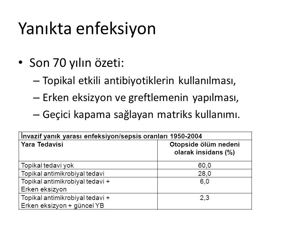 Otopside ölüm nedeni olarak insidans (%)