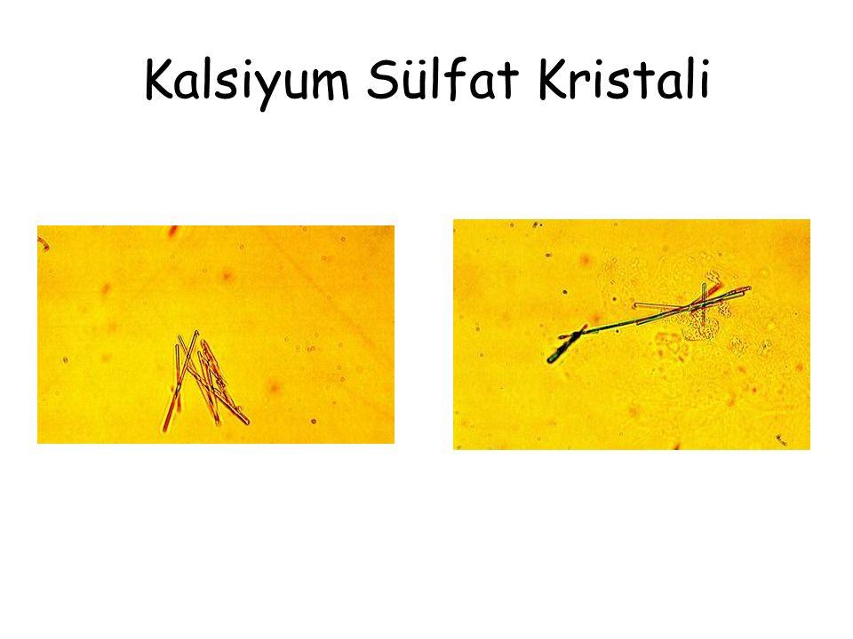 Kalsiyum Sülfat Kristali