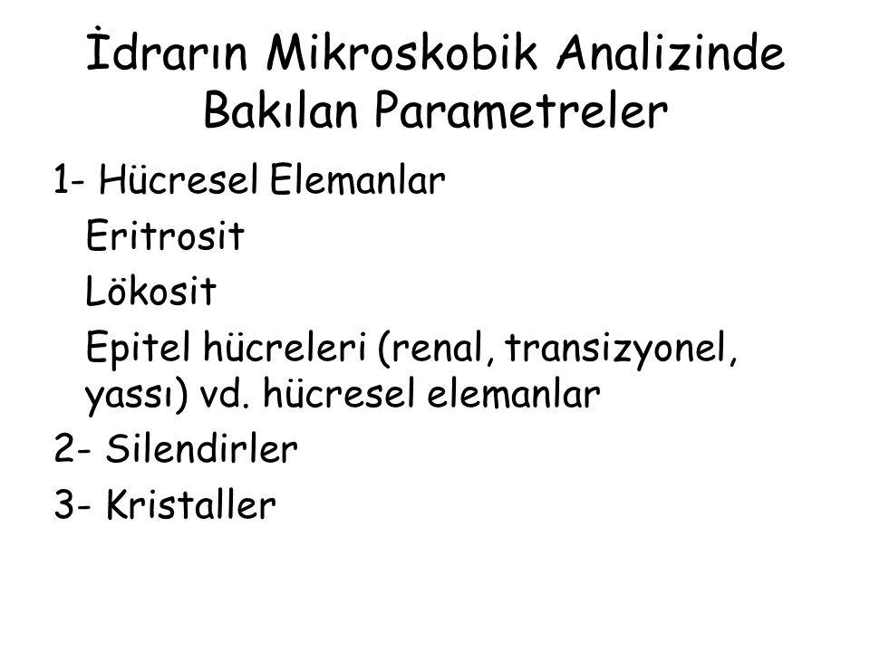 İdrarın Mikroskobik Analizinde Bakılan Parametreler