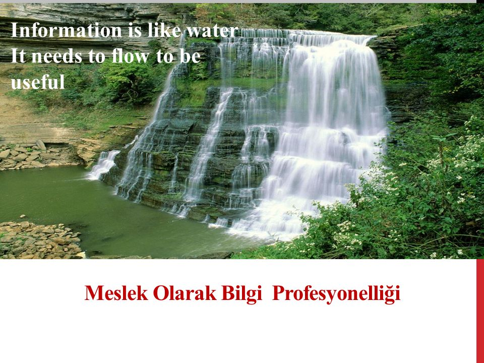 Meslek Olarak Bilgi Profesyonelliği