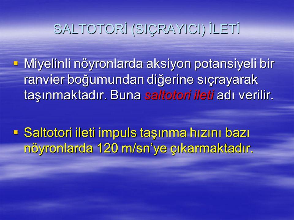 SALTOTORİ (SIÇRAYICI) İLETİ