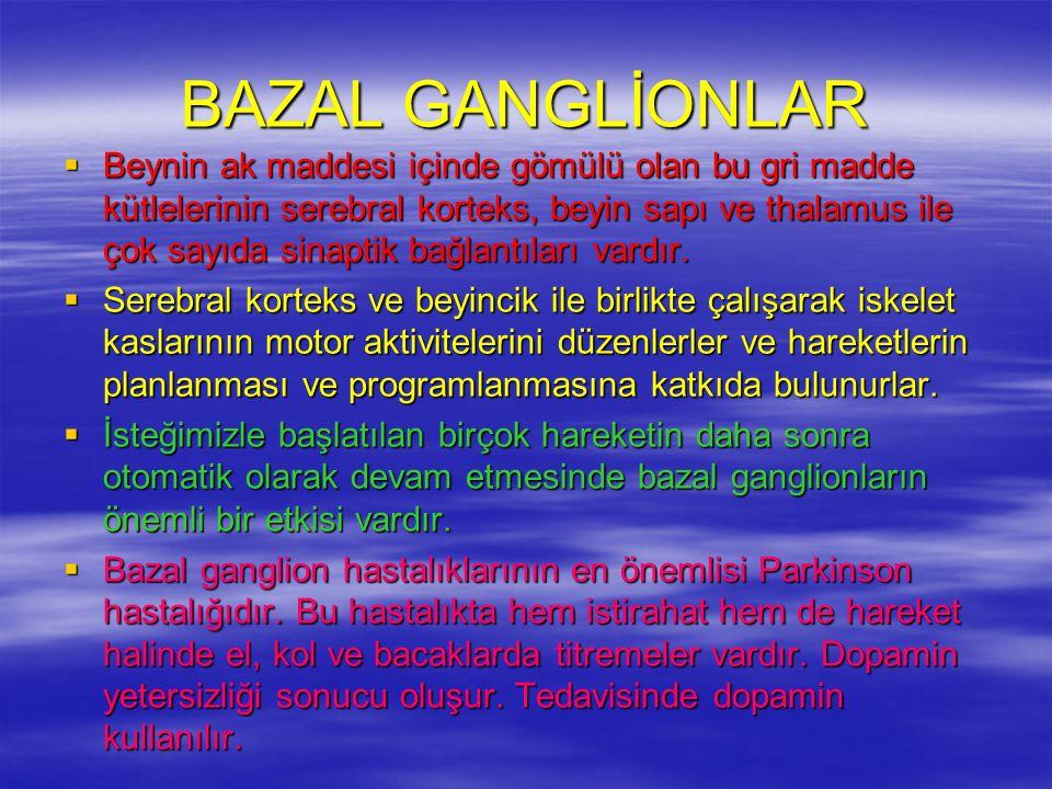 BAZAL GANGLİONLAR