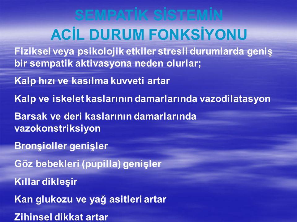 SEMPATİK SİSTEMİN ACİL DURUM FONKSİYONU