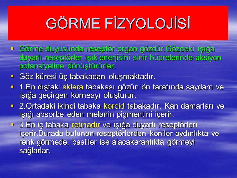 GÖRME FİZYOLOJİSİ