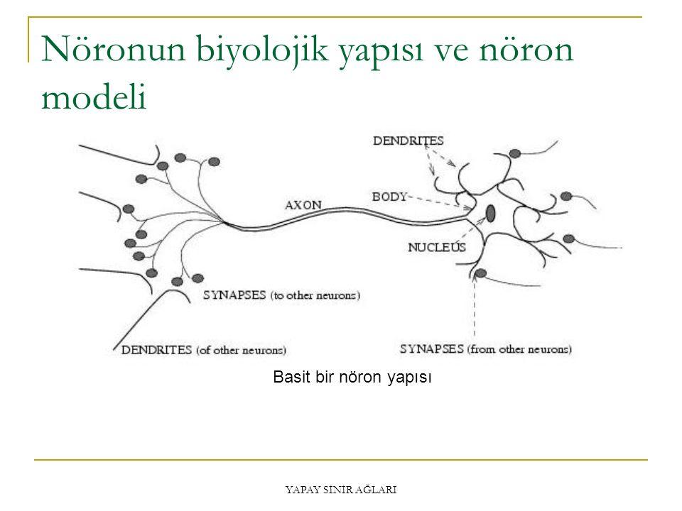 Nöronun biyolojik yapısı ve nöron modeli