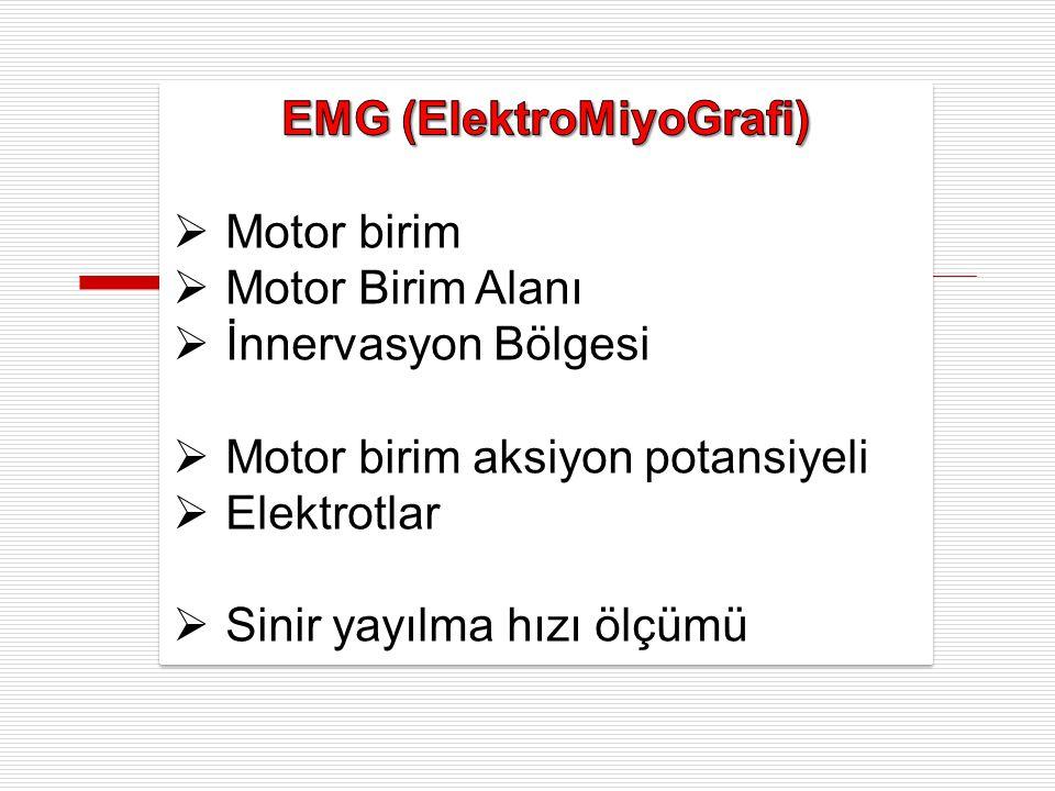 EMG (ElektroMiyoGrafi)