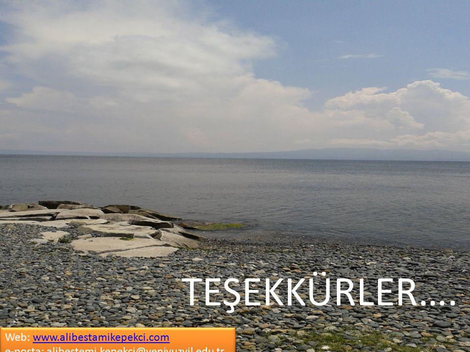 TEŞEKKÜRLER…. Web: www.alibestamikepekci.com e-posta: alibestemi.kepekci@yeniyuzyil.edu.tr