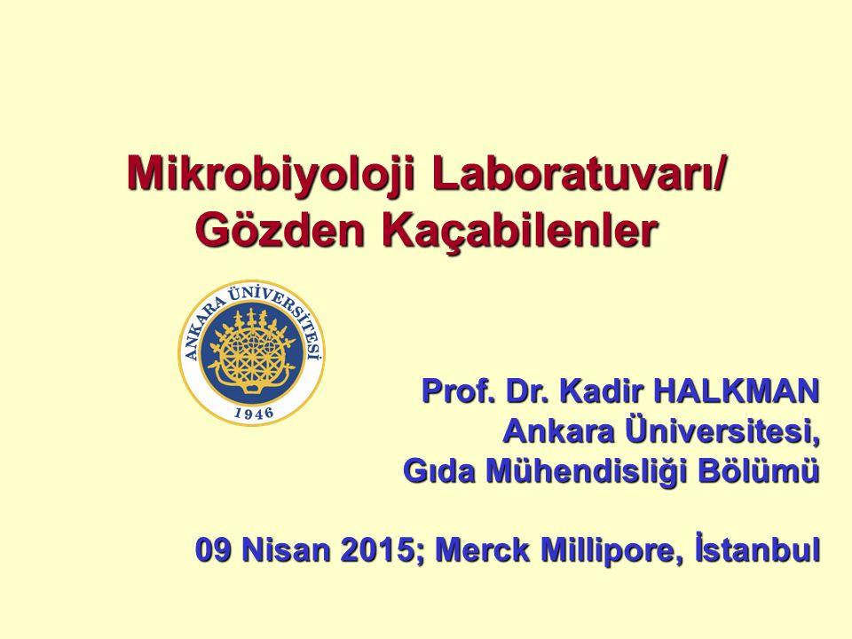 Mikrobiyoloji Laboratuvarı/