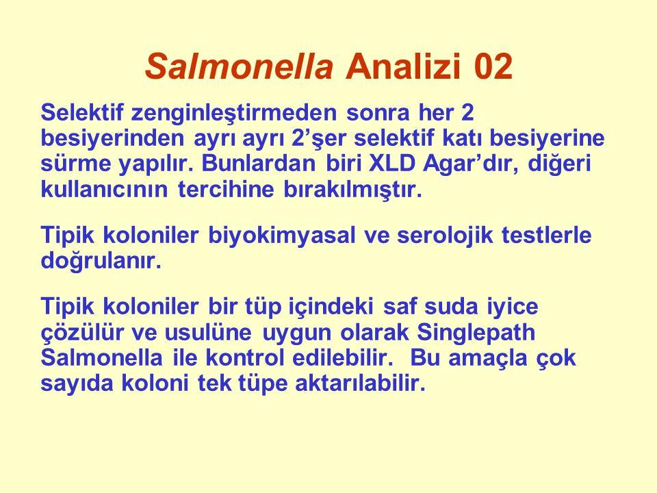 Salmonella Analizi 02