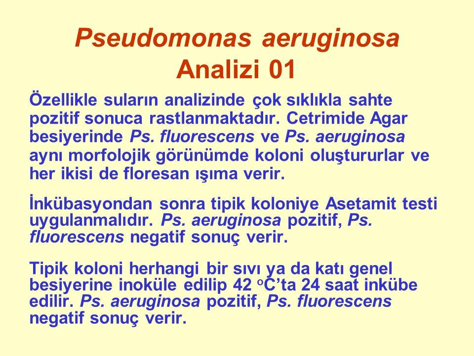 Pseudomonas aeruginosa Analizi 01