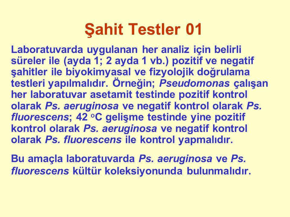 Şahit Testler 01