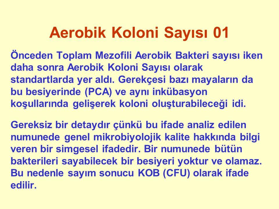 Aerobik Koloni Sayısı 01