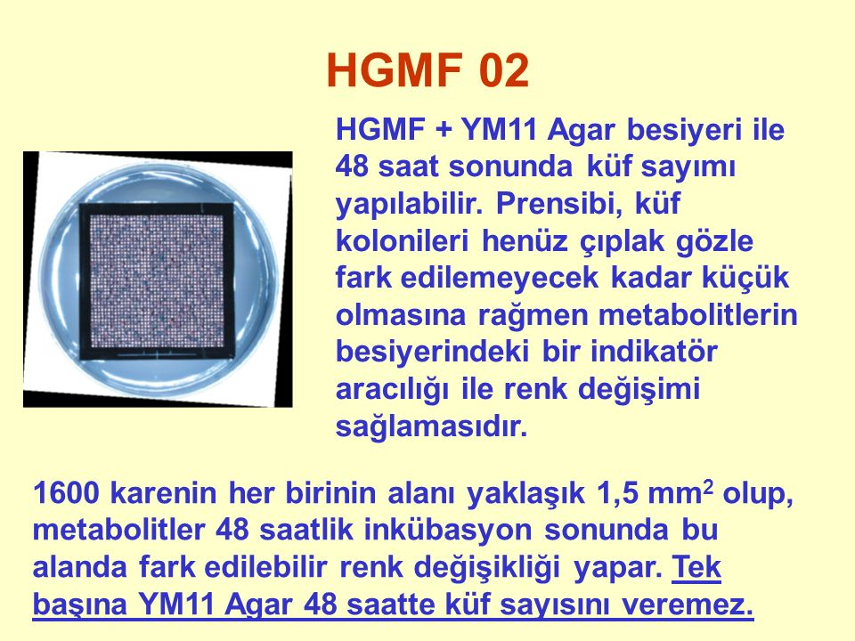 HGMF 02