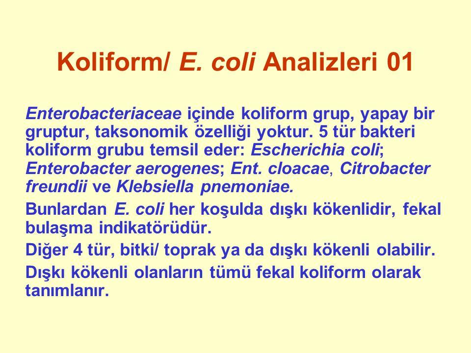 Koliform/ E. coli Analizleri 01